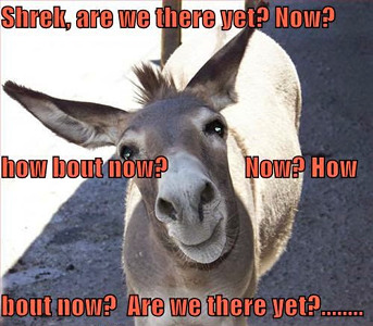 donkey-are-we-there-yet.jpeg